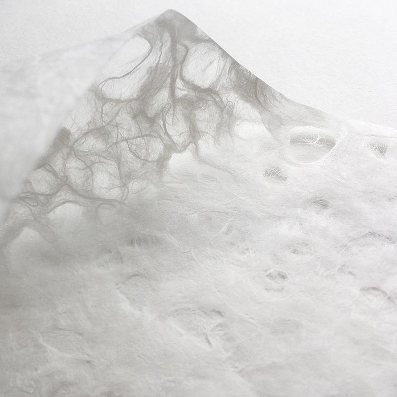 楮落水紙ロール10m